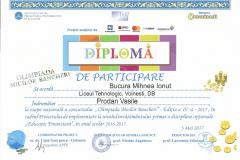 Diplomă de participare - Olimpiada micilor bancheri