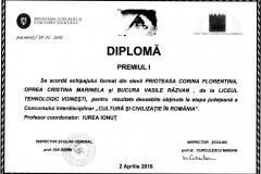Diploma Cultura si civilizatie in Romania