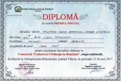 Premiul Special - Prioteasa Corina Cristina  - etapa națională - Concrusul Cultură și Civilizație în România